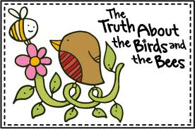 The birds and the bees: Bodies and babies for preschoolers